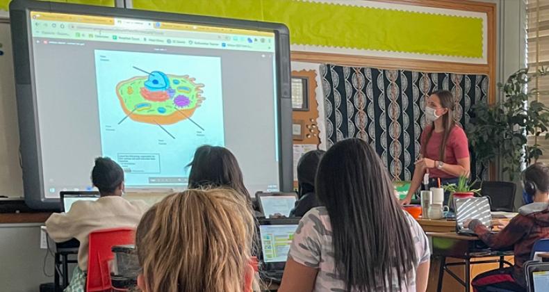 A teacher instructing students.